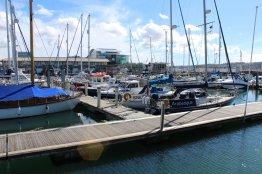 Boat Dock (1)